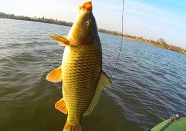 Рыбалка в татарии