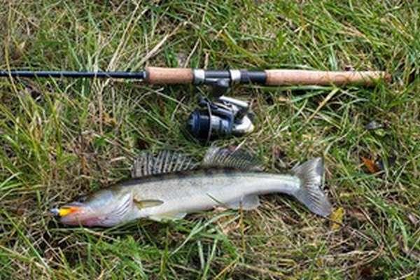 Рыбалка на Пестовском водохранилище