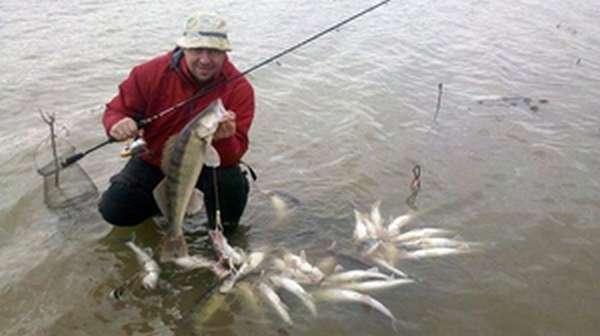 Места для рыбалки в Воронежской области - Рыбалка на Дону