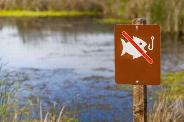 знак запрещена ловля рыбы
