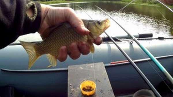 Как выбрать удочку для рыбалки на карасей