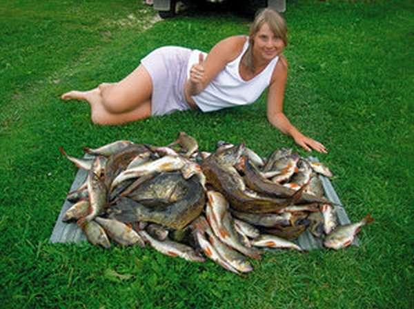 Какие есть водоемы для рыбалки
