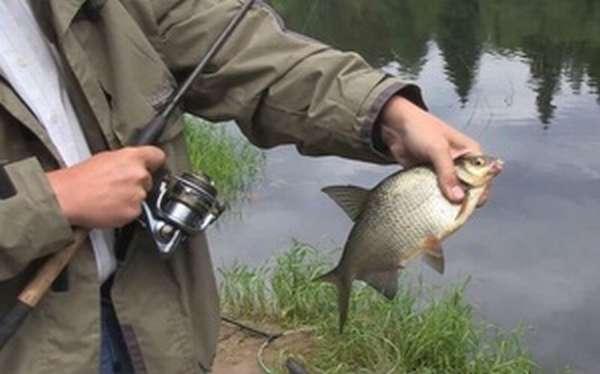 Характеристика майской рыбалки на плотву