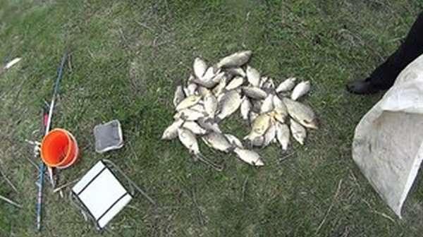 Особенности ловли рыбы без удочки