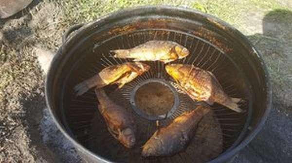 Секреты и способы горячего копчения рыбы
