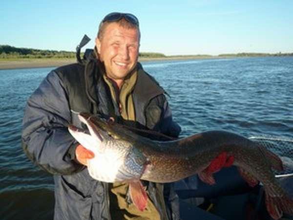 Зимняя и летняя рыбалка