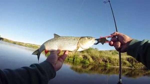 Рыбалка в водоеме