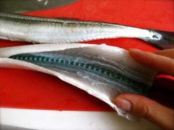 Рыба игла - зеленые кости