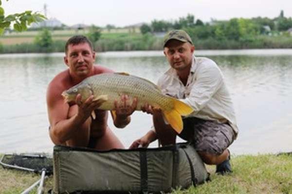 Рыбная ловля на карпятнике