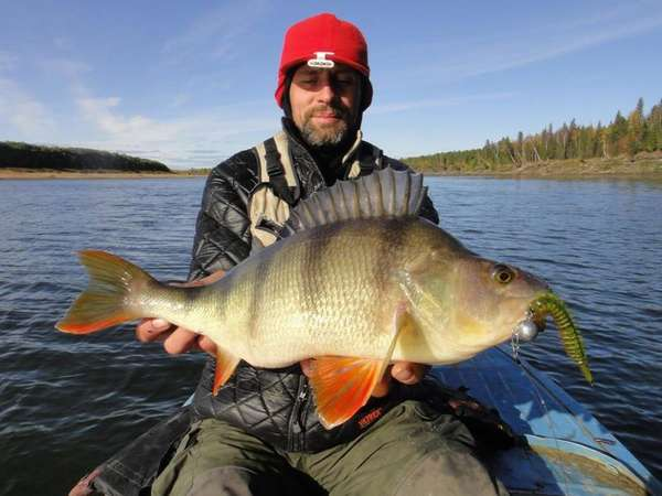 Рыбалка большой улов