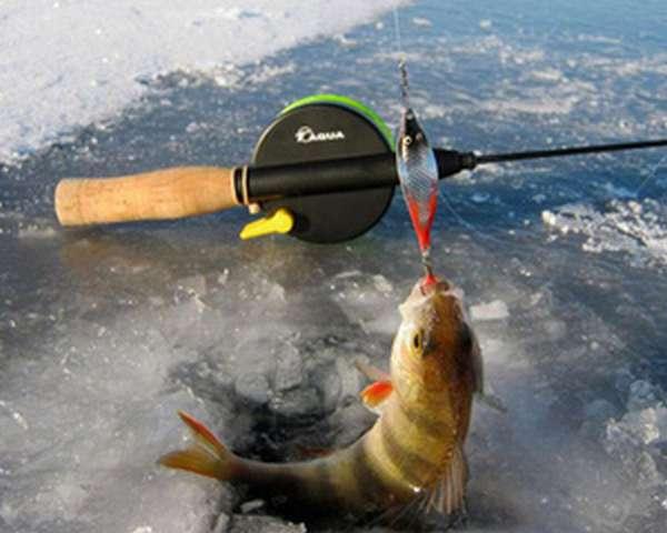 Блёсны для зимней рыбалки на окуня
