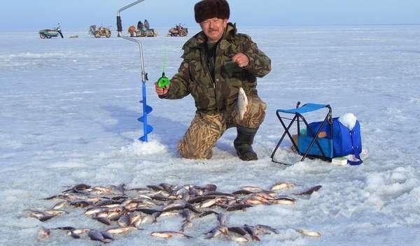 При каком давлении лучше клюет рыба осенью