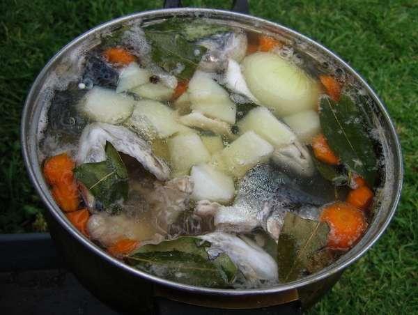 Как сварить щуку с овощами