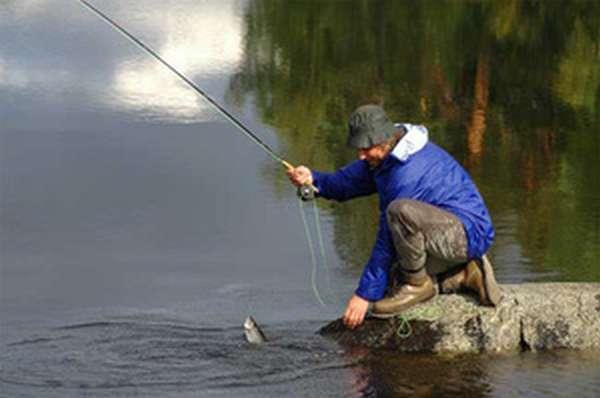 Ленинградская область- рай для рыболова