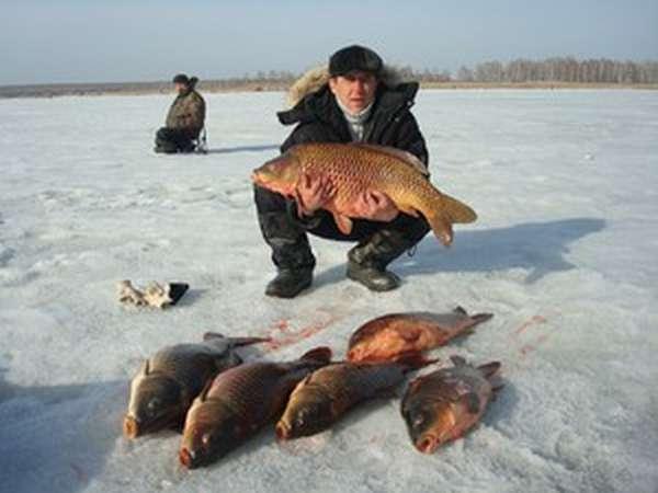 Чем хороша рыбалка в Свердловской области