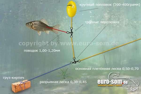 Элементы для рыбалки на сома