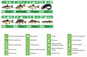 Лунный календарь благоприятных дней рыболова и клева рыбы на апрель 2018 года. Короткие рекомендации ловли рыбы в весенне-летний период
