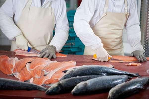 Советы опытных поваров для приготовления балыка из рыбы