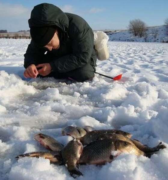 Зимняя ловля карасей