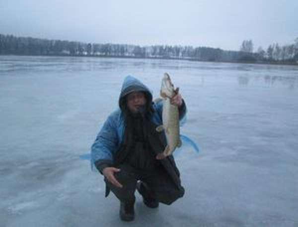 Зимние трофеи на истринском водохранилище