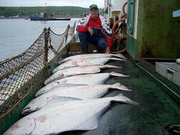 Рыбалка сахалин