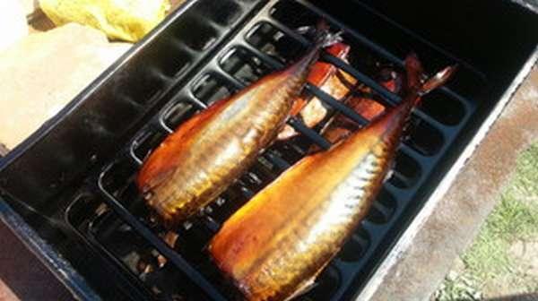 Секреты и способы горячего копчения рыбы в домашних условиях