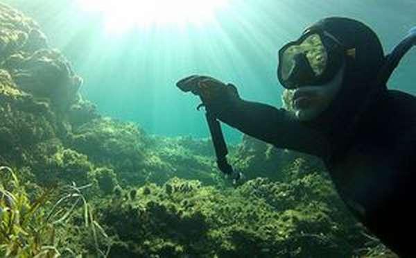 Все для подводной охоты