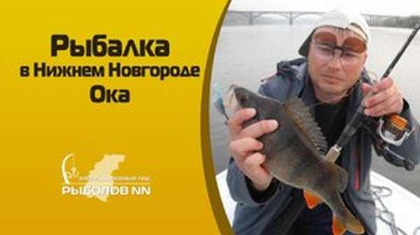 Особенности выбора места для рыбалки
