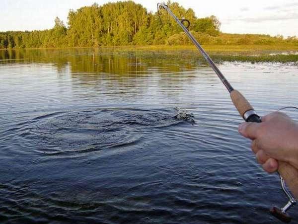 При каком ветре лучше клюет рыба летом, влияние его направления на рыбалку
