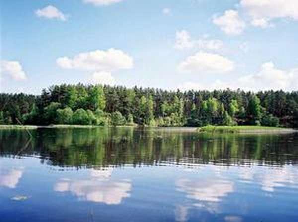 Лучшие места для рыбалки на Пестовском водохранилище