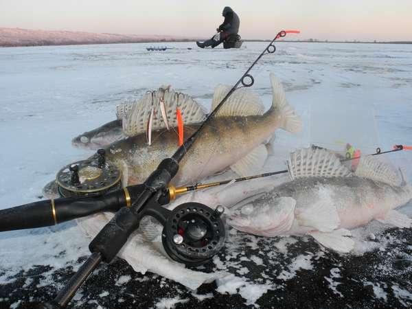 Рыбалка в пензенской области зимой
