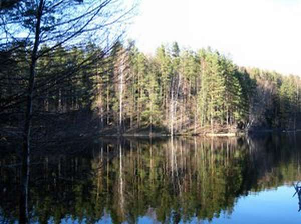 Озёра, реки и Финский залив- выбирай на любой вкус
