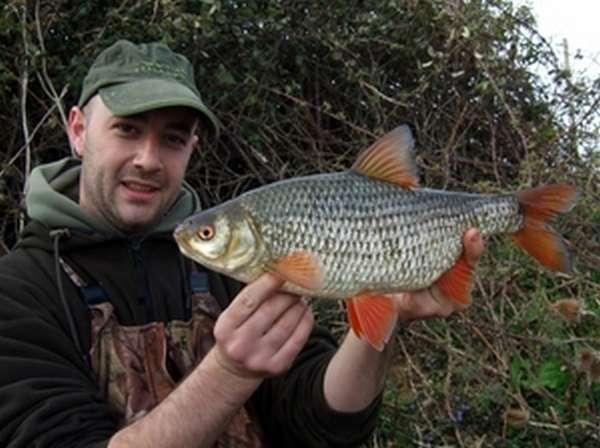 Ловля рыбы сороги