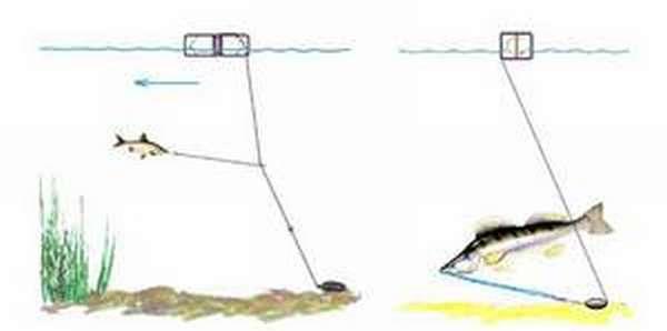 Особенности снастей для зимней рыбалки