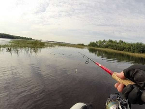 Какой ветер для рыбалки лучше