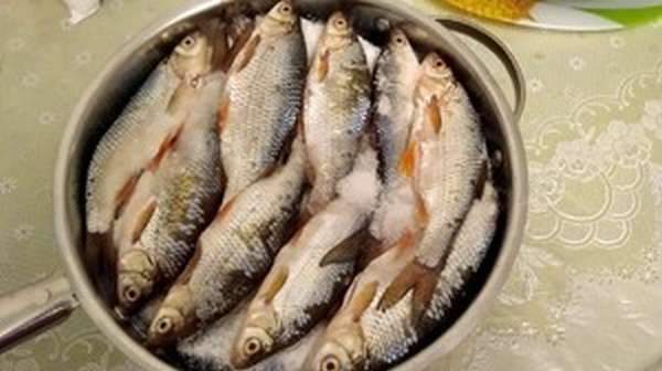 Соление рыбы в домашних условиях