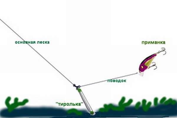 Разные виды рыб ловля на тирольскую палочку