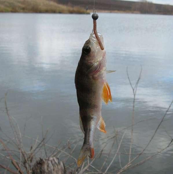 Балда для зимней рыбалки