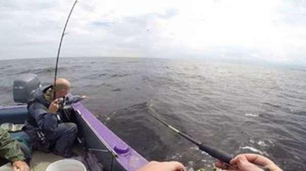 Рыбалка на рыбинском водохранилище летом