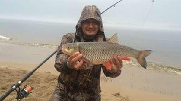 Сезонные особенности рыбалки на голавля