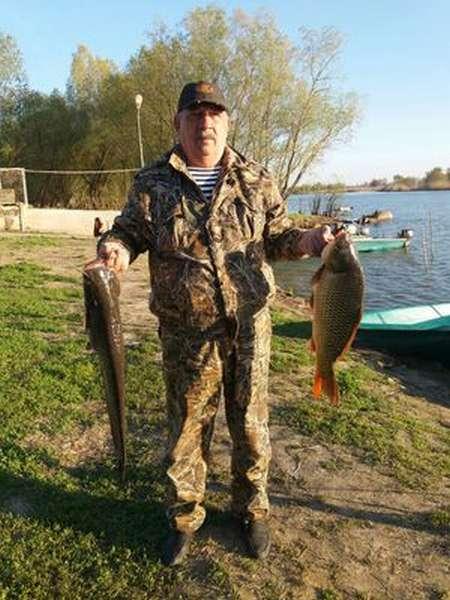 Какие рыбы водятся в водоемах Свердловской области