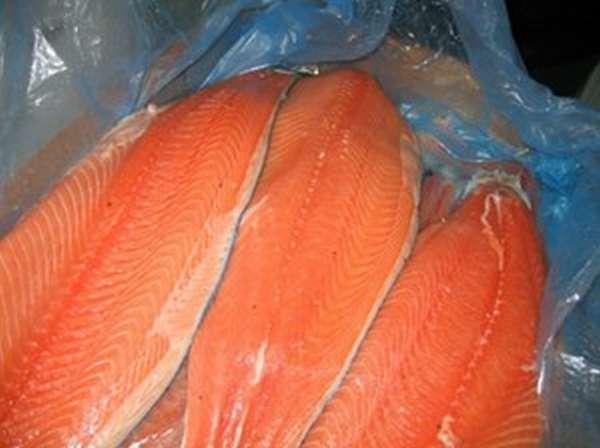 Чем отличаются лосось и семга