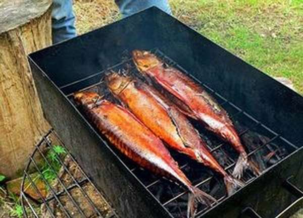 Коптильня для рыбы