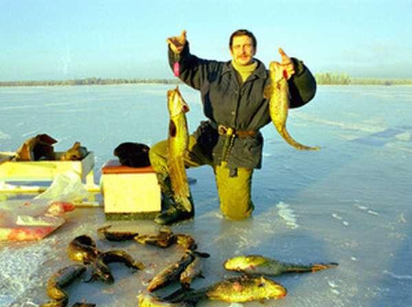 Как ловить зимой рыбу