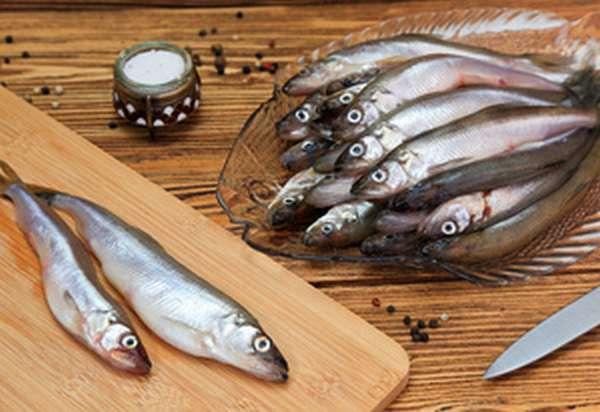Особенности рыбной ловли