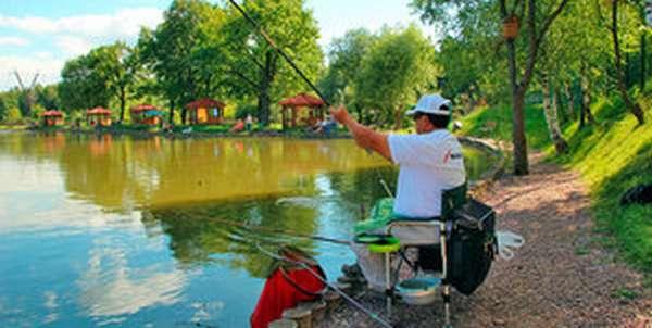 Как выбрать время для рыбалки