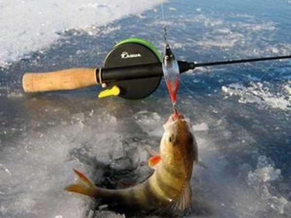 Как ловить рыбу на блесны