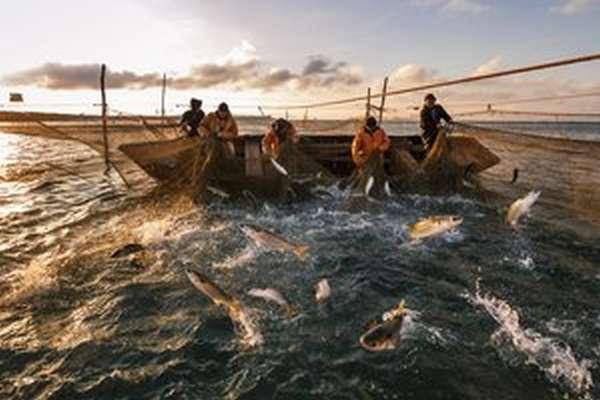 Новости с водоемов про рыбалку в карагандинской области