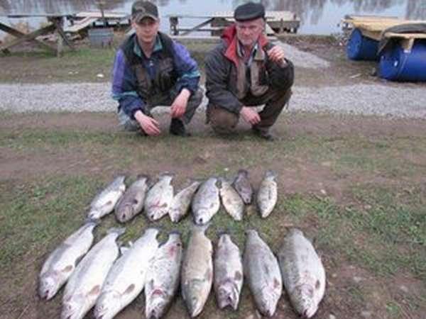 Рыбалка в Савельево-2