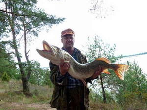 Ловля на кружки на чебоксарском водохранилищ